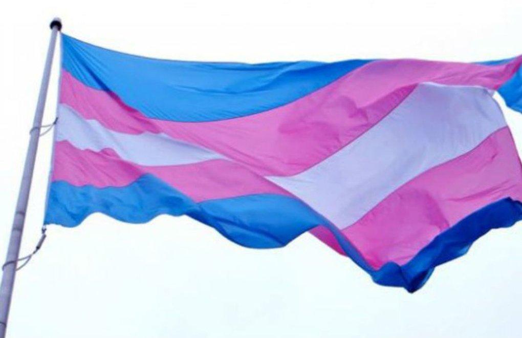 Alisa trans 'I'm trans.